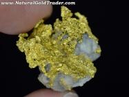 17.79 Gram California Gold & Quartz Specimen