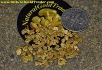 5 Gram Alaska Placer Picker Pay-Dirt Bag!