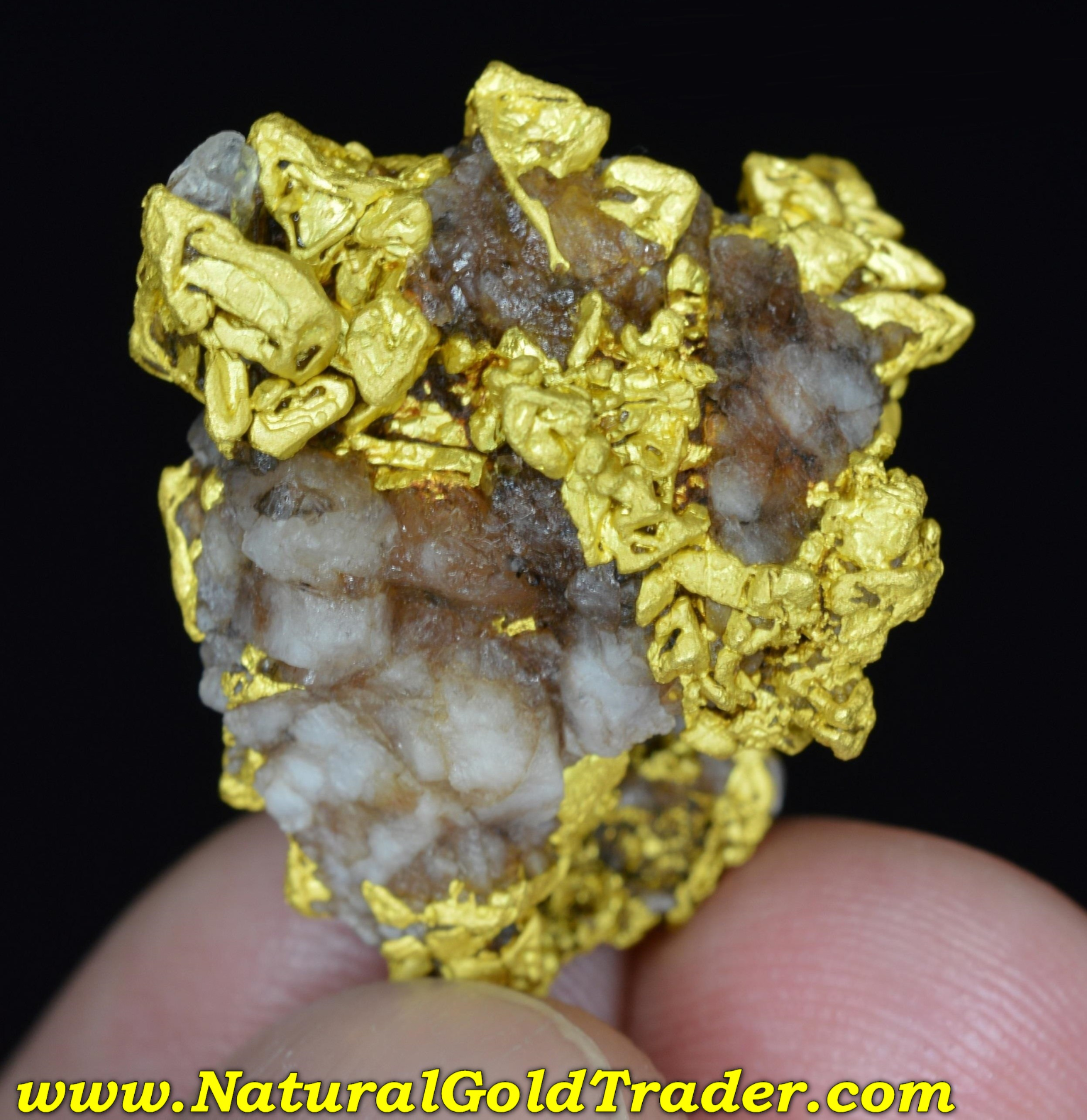 California Gold & Quartz High Grade Specimen