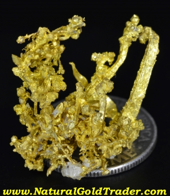 Idaho Crystallized Gold Nugget