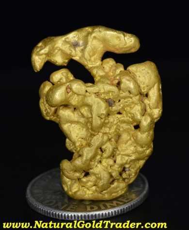 Oregon Gold Nugget The Beauty of Natural Gold