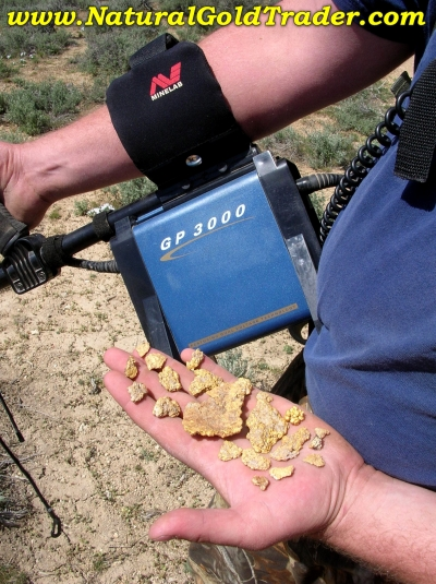 Northern Nevada Gold Nuggets Found with a Metal Detector