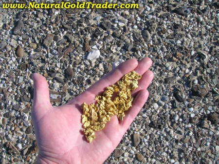 Handful of Eolian Placer Gold Nuggets