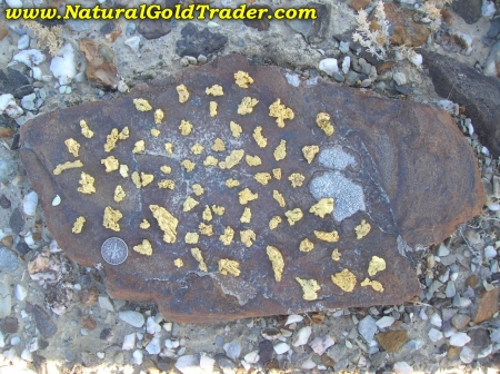 Eolian Gold Nuggets Sitting on a Schist Rock