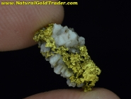 1.10 Gram Oregon Gold & Quartz Specimen