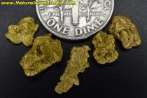 2.92 Grams (5) Oregon Placer Gold Nuggets