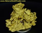 26.9 Gram Coloma California Gold Specimen