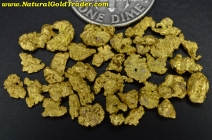 5.10 Grams of Nevada Gold Pickers & Nuggets