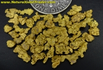 5.42 Grams of Nevada Gold Nuggets/Pickers