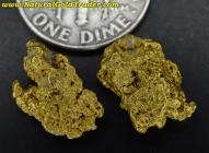 3.93 Grams (2) Eastern Oregon Gold Nuggets