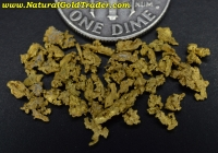 1.49 Grams of Northern Nevada Gold Pickers