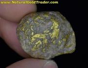 15.68 Gram Idaho Gold & Quartz Specimen