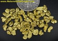 7.76 Grams of Alaska Gold Nuggets