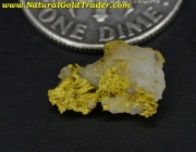 .44 Gram Siskiyou California Gold & Quartz