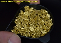 1 ozt.+ 32.0 Grams of Canada Gold Nuggets