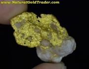 11.06 Gram Western Australia Gold & Quartz