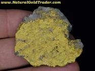 39.94 Gram Nevada Gold & Grey Quartz