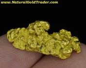8.49 Gram Northern Nevada Gold Nugget
