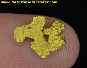 1.16 Gram Northern Nevada Gold Nugget