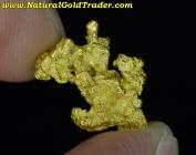 2.90 Gram Northern Nevada Gold Nugget