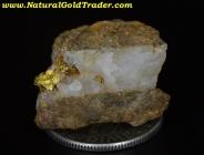3.45 Gram Australia Gold/Quartz/Schist