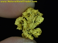 2.04 Gram Shasta County California Gold Nugget