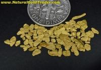 1 Gram Eastern Oregon Placer Gold Pay-Dirt