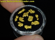 2.00 Grams (10) Nevada Placer Gold Nuggets