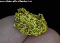 7.30 Gram Natural California Gold Nugget