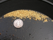 3 Gram Idaho Placer Gold Paydirt Bag