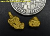 1.64 Grams (2) Northern Nevada Gold Nuggets
