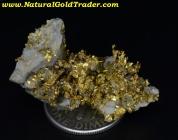 12.20 Gram Kennedy M. California Gold & Quartz