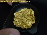 7.53 Grams of #12 Mesh Arizona Placer Gold