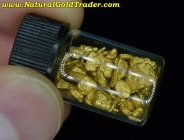 12.06 Grams of Superior Montana Gold Nuggets