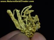 6.23 Gram Kennedy Mine California Gold Specimen