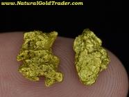 2.75 Grams (2) Sawtooth Nevada Gold Nuggets