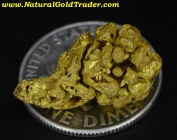 4.66 Gram Chicken Alaska Gold Specimen