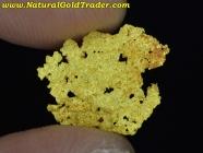 .27 Gram Sandstone Australia Reef Gold