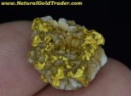 4.76 Gram Kalgoorlie Australia Gold & Quartz