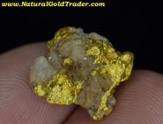 6.69 Gram Western Australia Gold & Quartz