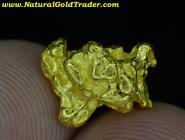 3.50 Gram Kalgoorlie Australia Gold Nugget