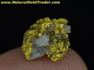 1.30 Gram Mariposa California Gold & Quartz