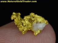 1.33 Gram Mariposa California Gold & Quartz