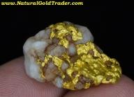 10.80 Gram Victoria Australia Gold & Quartz