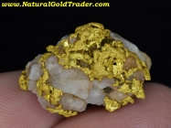 24.7 G. Sonora Mexico Gold/Quartz/Caliche
