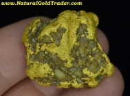 46.1 Gram Sonora Mexico Gold Nugget
