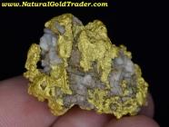 37.53 Gram Kalgoorlie Australia Gold & Quartz