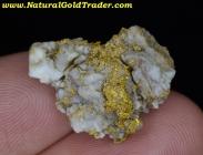 8.47 Gram Mariposa California Gold & Quartz