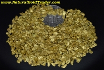 1 ozt. 31.1 Grams of Alaska Placer Gold