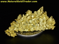 1.75 G. Round Mountain Nevada Gold Specimen